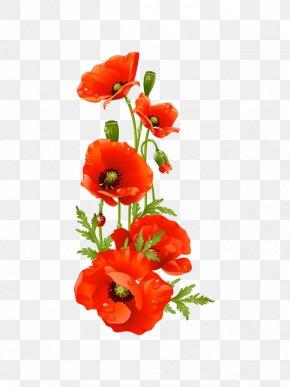 A Bouquet Of Flowers - Remembrance Poppy Flower Clip Art PNG