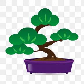 Bonsai Streamer - Tree Bonsai Flowerpot Houseplant Clip Art PNG