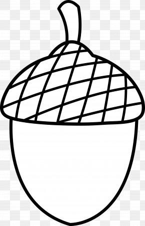 Nuts Cliparts - Acorn Oak Clip Art PNG