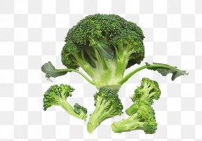 A Broccoli - Broccoli Cauliflower Vegetable Food Nutrition PNG