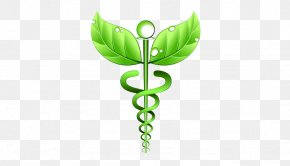 Health - Alternative Health Services Medicine Naturopathy Homeopathy Health Care PNG