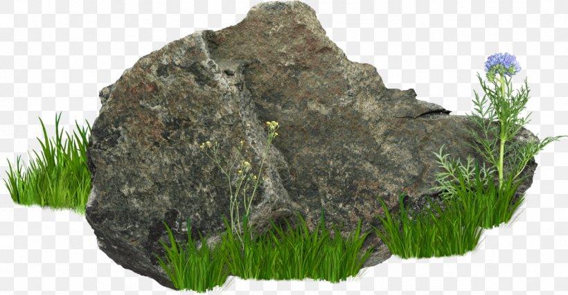 Rock, PNG, 1272x662px, Rock, Boulder, Grass, Image