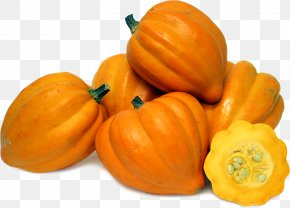 Acorn Squash File - Butternut Squash Pumpkin Pattypan Squash Cucurbita Maxima Acorn Squash PNG
