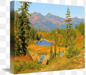 Painting - Mount Scenery National Park Landscape Painting Larch PNG
