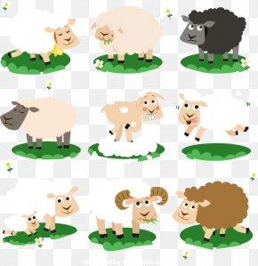 Cartoon Sheep Vector Material, - Cattle Sheep PNG