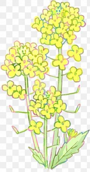 Design - Floral Design Cut Flowers Flowering Plant Plant Stem PNG