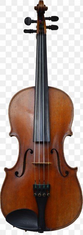 Violin - Cello Violin Family Musical Instrument Viola PNG