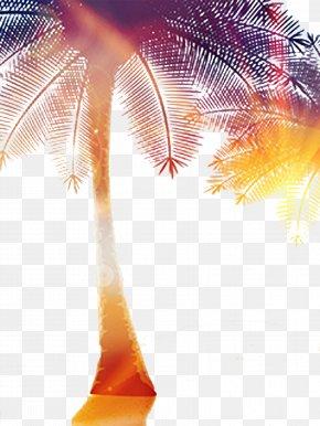 Halo Coconut Tree Decoration - Light Coconut Tree PNG