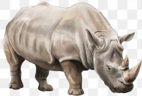 Rhino - Elasmotherium Rendering PNG