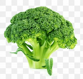 Broccoli - Broccoli Slaw Brussels Sprout Cauliflower Vegetable PNG