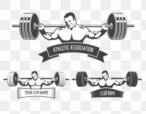 Gym - Powerlifting Fitness Centre Royalty-free Weight Training PNG