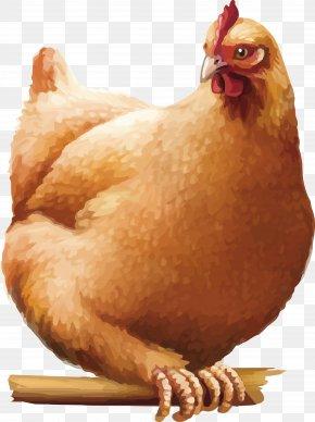 Chicken - Chicken Rooster Cartoon PNG