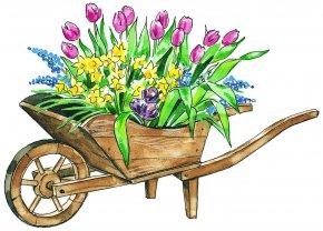 GARDEN - Flower Clip Art PNG