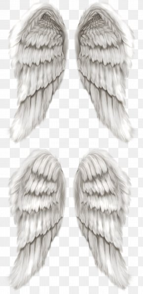 Wing - Cherub Angel Wing Angel Wing PNG