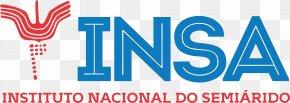 United States - United States Pillow Monkey Puzzle Day Nursery Philip Morris USA Logo PNG
