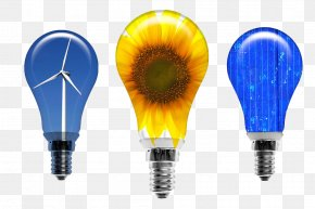 Wind Power Generation Bulb - Wind Farm Energy Windmill Electricity Generation PNG