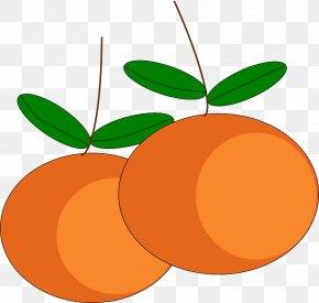 Orange Fruit - Mandarin Orange Tangerine Orange Juice Clip Art PNG