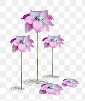 Plant Flowers - Allah Flower Rose Durood Floral Design PNG