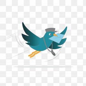 Vector Pattern Flying Pigeon Pigeon - Homing Pigeon Columbidae Bird Pigeon Post Clip Art PNG