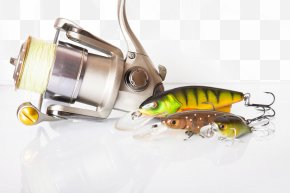 Fishing Rod - Fishing Lure Spin Fishing Plug Fishing Rod PNG