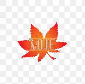 Logo Maple Leaf Japanese Maple Brand Font PNG
