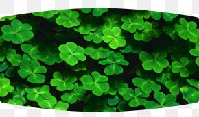 Saint Patrick's Day - Saint Patrick's Day Desktop Wallpaper Holiday Desktop Environment PNG