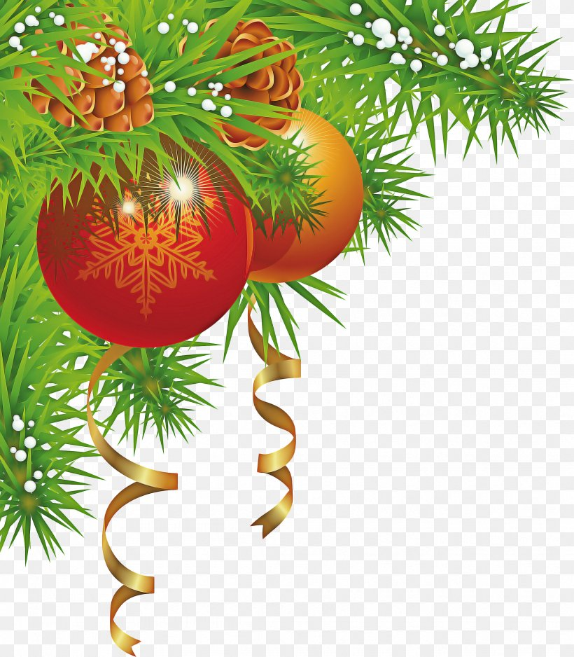 Christmas And New Year Background, PNG, 2441x2793px, Christmas Day, American Larch, Birthday, Branch, Christmas Download Free