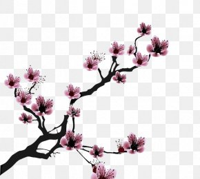 Cherry Blossom - Cherry Blossom Drawing Clip Art PNG