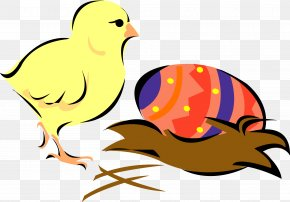 Chick - Easter Bunny Chicken Clip Art PNG