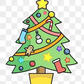 Conifer Christmas - Christmas Tree PNG