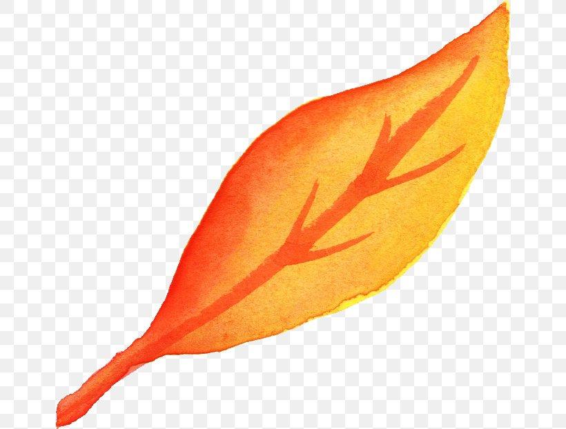 Leaf Watercolor Painting Orange Yellow, PNG, 658x622px, Leaf, Art, Autumn, Autumn Leaf Color, Color Download Free