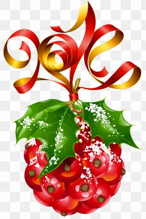 Mistletoe Christmas Ornament PNG Picture - New Year's Day Christmas And Holiday Season Public Holiday PNG