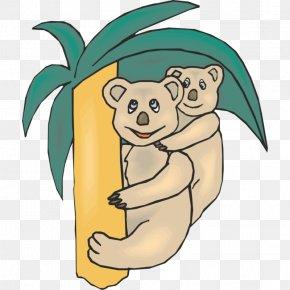 Koala - Koala Raccoon Giant Panda Bear Animation PNG