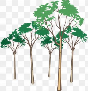 Tree Vector - Stock Photography Royalty-free Clip Art PNG