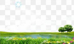 Spring Lake View - Download Icon PNG