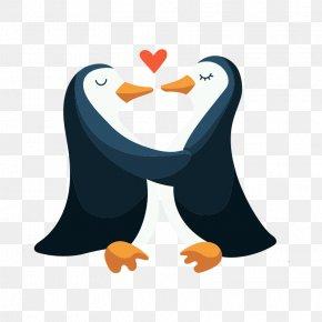 Vector Love Penguins - Penguin Animal Data European Rabbit PNG