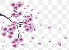 Spring Branch With Tree Flowers Clipart - Flower Spring Branch Clip Art PNG