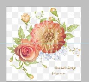 Rose's Funeral - Centifolia Roses Garden Roses Beach Rose Flower PNG