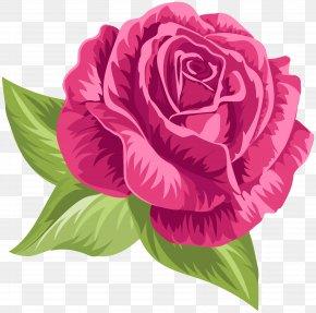 Pink Vintage Rose Clip Art - Image File Formats Lossless Compression PNG