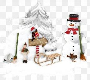 Christmas Tree - Christmas Ornament Christmas Tree PNG