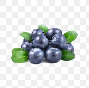 Blueberry Green Free Material - Juice Fruit Blueberry Seed Bilberry PNG