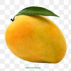 Mango - Valsad Mango Alphonso Vegetarian Cuisine Mangifera Indica PNG