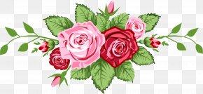 Rose - Vector Graphics Clip Art Rose Image Illustration PNG