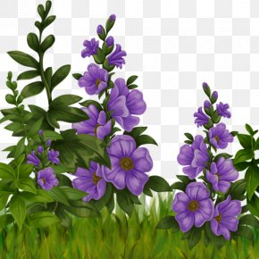 Purple Hibiscus - Sadness Hammock Fight Flower PNG