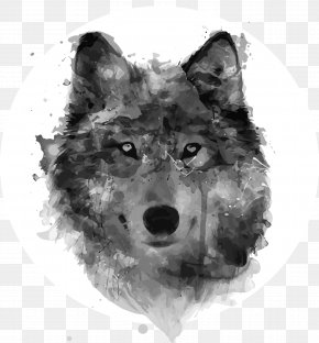 Painting - Gray Wolf Watercolor Painting Drawing Watercolour Flowers PNG