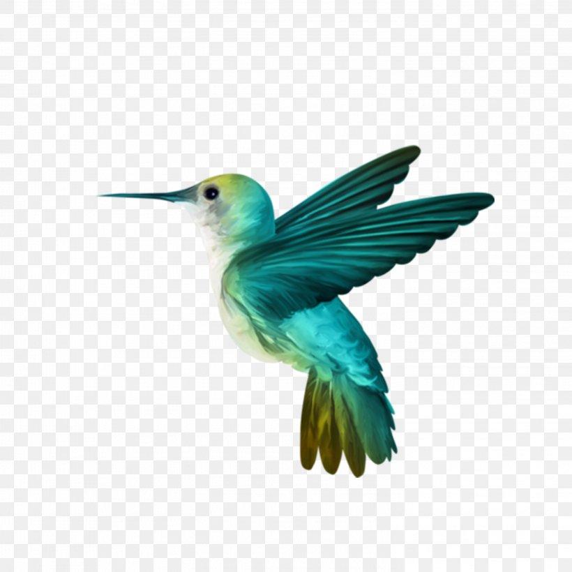 Hummingbird Wallpaper, PNG, 2953x2953px, Hummingbird, Art, Beak, Bird, Coraciiformes Download Free