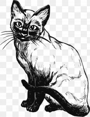 Line Drawing - Siamese Cat Line Art Drawing Clip Art PNG