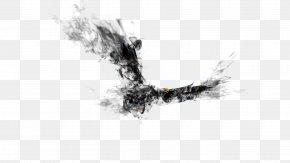 Eagle - Ink Hawk PNG