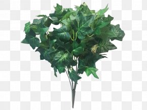Vegetable - Garden Winter Vegetable Flowerpot PNG