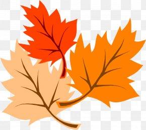 Thanksgiving Picture - Autumn Leaf Color Clip Art PNG